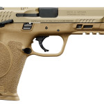 New for 2017! Smith & Wesson 11537 M&P9 M2.0 Double 9mm 5″ 17+1 TS 3Dot Flat Dark Earth Interchangeable Backstrap Grip FDE Armonite Stainless Steel