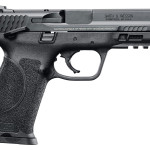 New! Smith & Wesson 11524 M&P M2.0 Double Action 9mm w/Safety 4.25″ 17+1 Black Interchangeable Backstrap Grip- Black Stainless Steel
