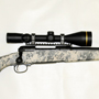 Savage 10 FCP Precision Carbine in 223 with a Leupold VX-3 4.5-14x50 with Boone & Crockett Reticle.